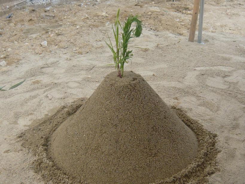 地鎮の儀 盛砂